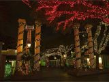 Christmas Light Show In atlanta Celebrate Christmas at Six Flags In 2018