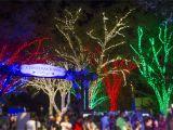Christmas Light tour Wichita Kansas Join In the Joy at Busch Gardensa Christmas towna Macaroni Kid