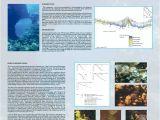 College Of Marin Community Education Catalog Natural History Museum Rijeka