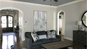 Collingwood Benjamin Moore Undertone Colour Review Benjamin Moore Collingwood Oc 28