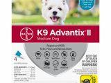 Comfortis for Dogs 20 40 Lbs Dog Flea Tick Walmart Com