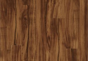 Coretec Plus Gold Coast Acacia Reviews Us Floors Coretec Plus 5 Plank 50lvp201 Gold Coast Acacia