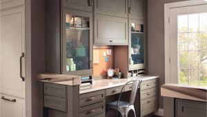 Corner Kitchen Cabinet Ideas New Kitchen Corner Cabinet