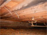 Crawl Space Vapor Barrier Lowes 32 Best Diy Crawlspace Images On Pinterest Crawl