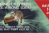 Critter Gitter Pest Control Lewis Pest Control Critter Gitter Serving Alabama