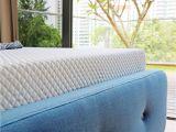 Cushion Firm Vs Medium Firm Super Single Mattress Size Singapore King Queen Size Bed
