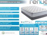 Cushion Firm Vs Plush Pillow top Eirwen Pillow top A Renue Mattress