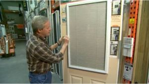 Custom Enclosed Door Blinds Enclosed Blinds for Doors Custom