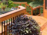 Deck Builders Louisville Ky American Deck Sunroom 5 Signs Of Spring In Lexington Louisville
