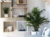 Diseños De Cocinas Pequeñas Y Sencillas 2019 Muebles Para Habitaciones Pequea as Fresco Coleccia N Mejores 13