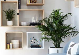 Diseños De Cocinas Pequeñas Y Sencillas Con Ventanas Muebles Para Habitaciones Pequea as Fresco Coleccia N Mejores 13