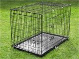 Dog Crate Divider with Hole Divider Amusing Dog Crate with Divider Extraordinary Dog