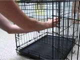 Dog Crate Divider with Hole Diy Set Up Puppy Crate Divider Youtube