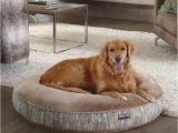 Dog sofa Bed Costco Kirkland Signature Dog Bed Best Between Costco Kirkland