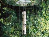Dove Proof Bird Feeders Birdfeeder