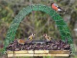 Dove Proof Bird Feeders Pigeon Proof Bird Table Perfect for Goldfinch Bullfinch