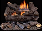 Duluth forge Ventless Gas Log Reviews Duluth forge Ventless Dual Fuel Gas Log Set 18 In