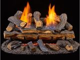 Duluth forge Ventless Gas Log Reviews Duluth forge Ventless Dual Fuel Gas Log Set 24 In