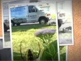Dynamic Pest Control toms River Nj Dynamic Pest Control Llc 732 505 3277 Youtube