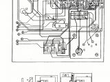 Dynasty Spas Neptune Series Dynasty Spas Wiring Diagram Wiring Diagram