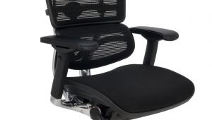 Ergohuman Plus Mesh Office Chair with Leg Rest Grospol Ergohuman Plus Bt Kmd31 Ceny I Opinie Ceneo Pl