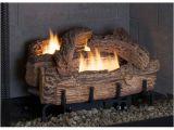 Everwarm Vent Free Gas Logs Reviews Everwarm 18 Quot Palmetto Oak Ventless Natural Gas Log Set
