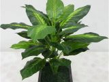 Fake Palm Trees for Sale Ebay 8 17aud 40 Cm Artificial Plant Leaves Lifelike Bush Potted Plants