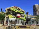 Family Activities Baltimore area 14 Things to Do In Baltimore S Inner Harbor