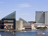 Family Activities In Baltimore Inner Harbor Essentials for Your Next Trip to Baltimore