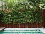 Fiberglass Pools Baton Rouge area 1115 Best O U T D O O R S P A C E S Images On Pinterest Modern