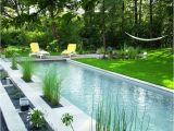 Fiberglass Pools In Baton Rouge 64 Best Piscinas Images On Pinterest Dream Pools My House and