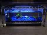 Fish Tank Coffee Table Diy Spectacular Diy Fish Tank Coffee Table Free Guide and