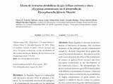 Floristerias En San Martin El Salvador Pdf Antifungal Properties Of Bioactive Compounds From Plants