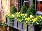 Flower Window Boxes Coupon Code Flower Window Boxes Window Boxes Non Flower Window Box