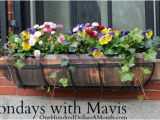 Flower Window Boxes Coupon Code Free Kindle Books Deals On Running Gear Jewelry Deals
