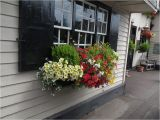Flower Window Boxes Coupon Code Herb Displays Herbdisplays Co Uk