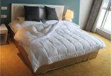 Fluffiest Down Alternative Comforter Amazon 79 Off On Amor Amore White soft Fluffy Reversible Down