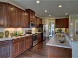 Forevermark Cabinetry Signature Pearl New John Steinbeck Home Model for Sale Nvhomes Home Kitchen