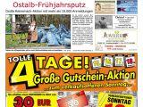 Fry Reglet Shape Finder Der Gmunder Anzeiger Kw 11 by Sdz Medien issuu