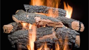 Golden Blount Gas Logs Golden Blount 30 Inch Big Tex Vented Natural Gas Log Set