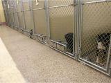 Good Flooring for Dog Kennel Dog Kennel Flooring Kenneled Dogs Floors
