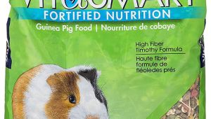 Guinea Pig soft toy Amazon Amazon Com Vitakraft Guinea Pig Food High Fiber Timothy formula 1