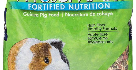 Guinea Pig soft toy Amazon Amazon Com Vitakraft Guinea Pig Food High Fiber Timothy formula 1