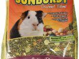 Guinea Pig toys Amazon Amazon Com Higgins Sunburst Gourmet Food Mix for Guinea Pigs 3