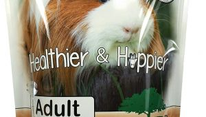 Guinea Pig toys Amazon Amazon Com Sherwood Pet Health Guinea Pig Food Adult 4 5 Lb