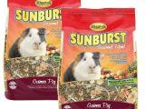 Guinea Pig toys On Amazon Amazon Com Higgins Sunburst Gourmet Food Mix for Guinea Pigs 3