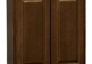Hampton Bay Cabinets Installation Guide Home Decorators Collection Holden Assembled 27x30x12 In Double Door