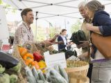Health Food Stores Reno Sell Your Homegrown Produce at A Farmers Market