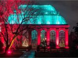 Holiday Light Show atlanta Botanical Gardens Christmas at the Botanics Royal Botanic Garden Edinburgh