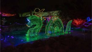 Holiday Light Show atlanta Botanical Gardens New Botanical Gardens Night Lights